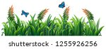 flower and grass for decor... | Shutterstock .eps vector #1255926256