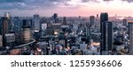 panorama of downtown city... | Shutterstock . vector #1255936606
