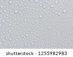 close up water drops on black... | Shutterstock . vector #1255982983