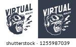 vintage gaming monochrome print ... | Shutterstock .eps vector #1255987039