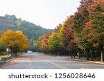 autumn landscape beautiful... | Shutterstock . vector #1256028646
