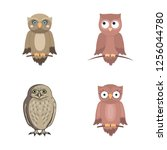 vector design of animal and... | Shutterstock .eps vector #1256044780