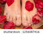 extreme close up of female feet ... | Shutterstock . vector #1256087416