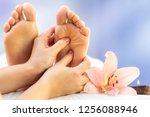 macro close up of hands... | Shutterstock . vector #1256088946