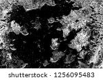 abstract background. monochrome ... | Shutterstock . vector #1256095483