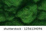 green grass growing on hills....   Shutterstock . vector #1256134096