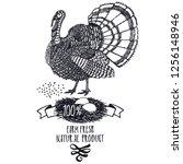 turkey organic farm fresh... | Shutterstock .eps vector #1256148946