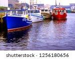 canada  nova scotia  cape... | Shutterstock . vector #1256180656