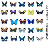 Collection Of Butterflies In...