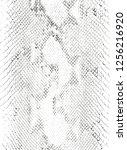 distressed overlay texture of... | Shutterstock .eps vector #1256216920