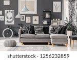 knot pillow on scandinavian... | Shutterstock . vector #1256232859