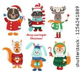 christmas set with isolated... | Shutterstock .eps vector #1256241889