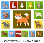 toy animals flat icons in set... | Shutterstock .eps vector #1256254066