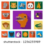 wild animal flat icons in set... | Shutterstock .eps vector #1256255989