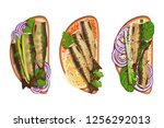 set of toasts with various... | Shutterstock .eps vector #1256292013