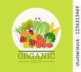 shopping basket and organic... | Shutterstock .eps vector #1256313469