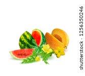 fresh  nutritious watermelon... | Shutterstock .eps vector #1256350246