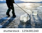 Workers mine large cubes of natural river ice. A large block of sawed-up river ice.workers mine large cubes of natural river ice, Ice Miners