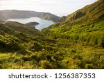 panoramic view point... | Shutterstock . vector #1256387353