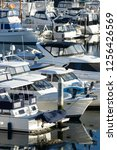 row of luxury yachts docked at... | Shutterstock . vector #1256426569