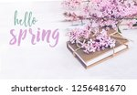 hello spring. lilac flowers... | Shutterstock . vector #1256481670