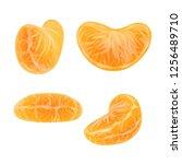 set of realistic mandarin or... | Shutterstock .eps vector #1256489710