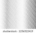 halftone background. fade... | Shutterstock .eps vector #1256522419