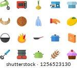 color flat icon set saucepan...