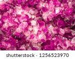 amethyst pink crystals. gems.... | Shutterstock . vector #1256523970