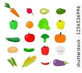 set of vegetables  carrot ...   Shutterstock .eps vector #1256536996