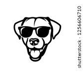 labrador retriever dog face...   Shutterstock .eps vector #1256606710