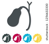 gall bladder icon as eps 10 file | Shutterstock .eps vector #1256632330