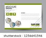 flyer  brochure  billboard... | Shutterstock .eps vector #1256641546