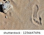 cairn on sand  stones on sand ... | Shutterstock . vector #1256647696
