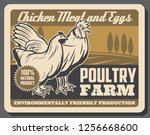 poultry farm chicken meat and... | Shutterstock .eps vector #1256668600