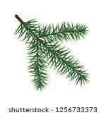 green lush spruce branch. fir... | Shutterstock .eps vector #1256733373