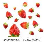 shoot strawberries up close | Shutterstock . vector #1256740243