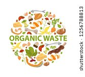 round template organic waste... | Shutterstock .eps vector #1256788813