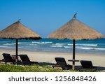 sunbeds under a straw umbrella...   Shutterstock . vector #1256848426