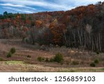 Autumn colors highlight a hillside at Govenor Dodge State Park, Iowa County, Wisconsin
