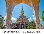 landscape of large golden... | Shutterstock . vector #1256890786