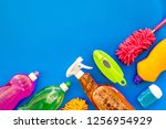 housecleaning with detergents ... | Shutterstock . vector #1256954929
