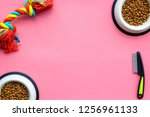 pet care  feed and training on... | Shutterstock . vector #1256961133