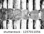 abstract background. monochrome ... | Shutterstock . vector #1257011056