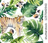 seamless watercolor tiger... | Shutterstock . vector #1257040543