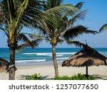 sunbeds under a straw umbrella...   Shutterstock . vector #1257077650