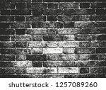 distressed overlay texture of... | Shutterstock .eps vector #1257089260