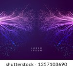 point explode. array with... | Shutterstock .eps vector #1257103690