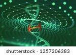 dna helix. innovative... | Shutterstock . vector #1257206383