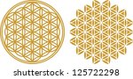 vector image   flower of life   ...